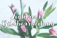 Lightroom Bildbearbeitung, Tipps und Tricks, Fotobearbeitung Photoshop, Tutorial, Anleitung, whoismocca.com, fashionblog österreich