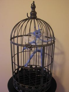 "You could totally keep a caged cornish pixie and let it ""escape"" every now and then so it was around the room"