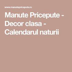 Manute Pricepute - Decor clasa - Calendarul naturii