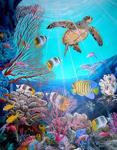 Green Sea turtle enjoying life with his friends in a beautiful blue Pacific Ocean coral reef - Blu Rivard