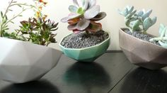 Love these little geometric planters.