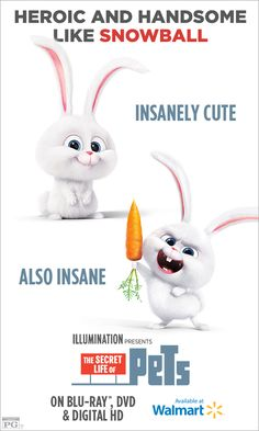 Which pet are you most like? If people think you're crazy, they're probably just jealous of your genius. Own THE SECRET LIFE OF PETS on Blu-ray & DVD Dec Animal Memes, Funny Animals, Cute Animals, Secret Life Of Pets, Snowball, Disney Love, Movie Tv, Pets Movie, Movies And Tv Shows