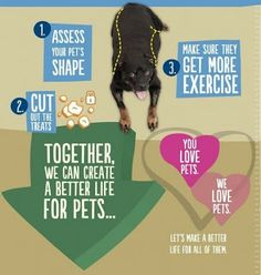 All Things Dog Blog-Ask the Vet-Leaner Pets Live Longer Live Long, Happy Dogs, Better Life, Pets, Blog