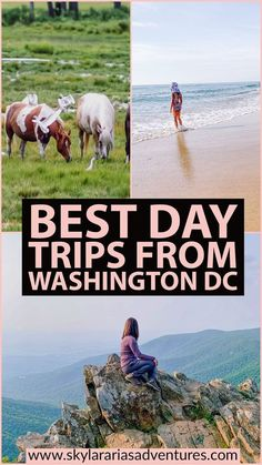 Guide to the best day trip ideas from Washington DC - Skylar Aria's Adventures Best Weekend Trips, Weekend Getaways, Day Trips, Travel With Kids, Family Travel, Cool Places To Visit, Places To Travel, Usa Travel, Travel Tips