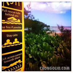 Stay calm and photofriday on! #chongolio