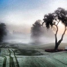 Hole #1 in the fog on the Stadium Course at TPC Sawgrass.