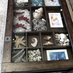 Amazing Shadow Box Coffee Table Ideas And Plans Seaside Decor, Beach House Decor, Coastal Decor, Seashell Projects, Seashell Crafts, Shadow Box Coffee Table, Seashell Display, Mixed Media Boxes, Beachy Room