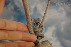 Miniature Baby Koala Bear * Handmade Sculpture * by ReveMiniatures.deviantart.com on @DeviantArt