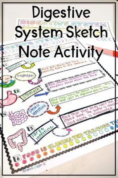 Science Resources, Science Education, Life Science, Nutrition Activities, Science Fun, Teaching Science, 5th Grade Science, Science Student, Digestive System For Kids