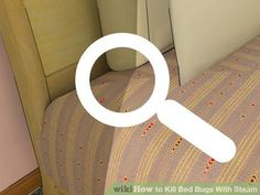 Image titled Kill Bed Bugs With Steam Step 9