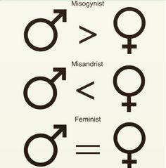 (1 of 3) Misogynist, Misandrist, and Feminist