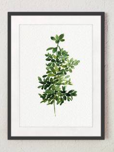 Thyme Painting Green Botanical Art Print by ColorWatercolor