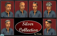 tlkaska's Silver Collection