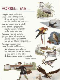 Learn To Speak Italian, Italian Vocabulary, Italian Lessons, Tongue Twisters, Italian Life, Vintage School, Italian Language, Learning Italian, Nursery Rhymes