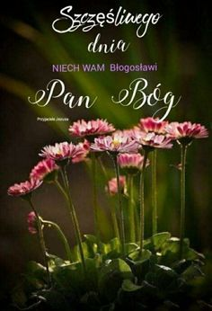 Good Morning, Bible, Polish, Pictures, Buen Dia, Bonjour, Good Morning Wishes