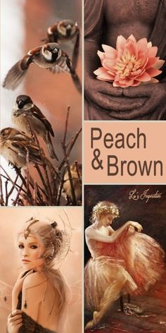 Hi Ladies. Tongight and Tomorrow lets pin PEACH AND BROWN thank you and happy pinning ❤