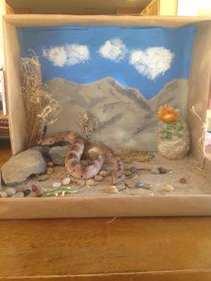 Rattlesnake Diorama
