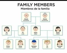 Family In Spanish, Spanish Lessons For Kids, Spanish Basics, Spanish Lesson Plans, Common Spanish Words, How To Speak Spanish, Learn Spanish, Spanish Numbers, Spanish English