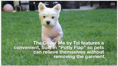 The Cover Me by Tui is great post surgery, allergies and hot spots. And it features a built in Potty Flap so you don't have to take it off for your pet to go outside!