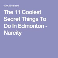 The 16 Coolest Secret Things To Do In Toronto - Narcity Stuff To Do, Things To Do, Cool Stuff, The Monkey's Paw, Scarborough Bluffs, What Is Hot, Smart Cookie, Winning The Lottery, Toronto Canada