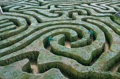A maze to get lost in!