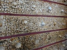 More dry bones. Dry Bones, Lisbon, Entryway Tables, Portugal, Home Decor, Decoration Home, Room Decor, Home Interior Design, Home Decoration