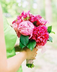 A bunch of bright magenta peonies tied with a pink ribbon is ideal for a summer…