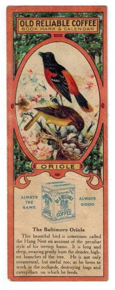 Vtg 1919 Old Reliable Coffee Calendar Bookmark w Baltimore Oriole Bird Picture