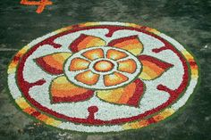 Onam Pookalam – Photos of Floral Designs. Rangoli Designs Flower, Rangoli Kolam Designs, Colorful Rangoli Designs, Flower Rangoli, Onam Pookalam Design, Pencil Drawings Of Flowers, Abstract Painting Techniques, Floral Designs, Flower Art