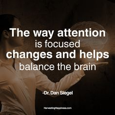 A great quote from Dr. Dan Siegel.#quote #motivation #happiness