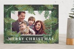 Winter Pine Holiday Photo Cards by Rebecca Durflin... | Minted