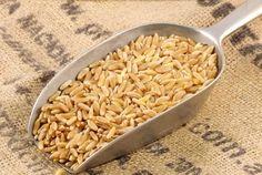 Il kamut contro le #allergie alimentari: ecco una #ricetta a base di #kamut e #tofu!