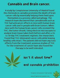 THINK... Cannabis and Brain Cancer~ https://mic.com/articles/126303/where-is-marijuana-legal-in-the-united-states-list-of-recreational-and-medicinal-states#.veMLzq41l  ~  U.S. to legalize medical marijuana ~  http://chicago.cbslocal.com/2013/08/01/quinn-signs-medical-marijuana-legislation/ ~ ...lower risk of developing diabetes, according to the latest study, which suggests that cannabis compounds may help...    http://www.cnn.com/2013/05/23/health/time-marijuana-diabetes