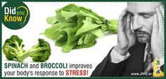 #DidYouKnow? Spinach and Broccoli improves your body's response to stress!