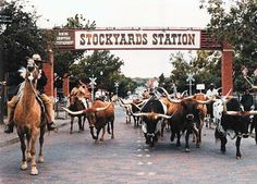 Fort Worth Stockyards--I've been here but I want to go back so I can truly enjoy it and not be rushed through! :)