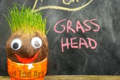 How to make Grass Heads. Mr Grass Head Craft. How to make a grass head. Spring Science for Preschool. Spring Crafts KS1 and Ks2. KS1 STEAM ideas for Summer. Garden Crafts. Grass Head Crafts. Grow your own grassheads. Educational Spring Crafts Elementary School. Grasshead DIY. Grass head doll. diy grass head. Grass seed