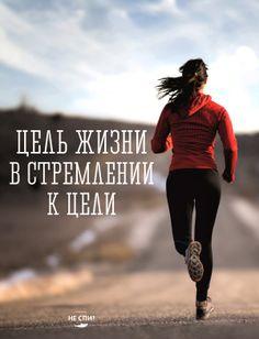 Смысл жизни - в стремлении к цели