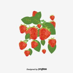 Strawberry Flower, Fruit, Flowers, Royal Icing Flowers, Flower, Florals, Floral, Blossoms