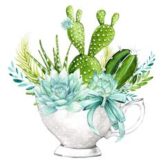 Prick me a cup! Illustration Blume, Botanical Illustration, Watercolor Illustration, Watercolor Succulents, Watercolor Flowers, Watercolor Paintings, Cactus E Suculentas, Madhubani Painting, Cactus Art