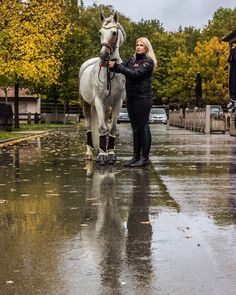 Mirror Mirror on the wall do you see our reflection 👀 ☔️? Thanks for the Love followers 💖 #horseblog #horses #equestrian #equineblog…