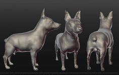 My dog https://www.facebook.com/amanda.esplugues 3D #3dwork #3D #dog #3Ddog #character