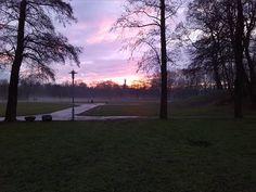 Guten Morgen am 15.01.2016: Sonnenaufgang auf Halles Ziegelwiese mit sich zurückziehenden Nebel.