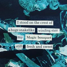 . . . . #thistlequiff #poem #poetry #foundpoetry #blackoutpoetry #poetrycommunity #writers #writersofinstagram #writersofig #poet…
