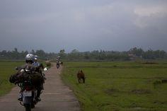 Motorbike travel easyriders