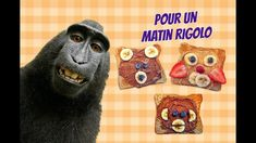 MES RÔTIES ONT L'AIR D'ANIMAUX!!! - YouTube Air, Monkeys, Faces, Shape, Children, Animaux