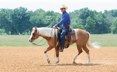 GPS: Get Power Steering With Your Horse