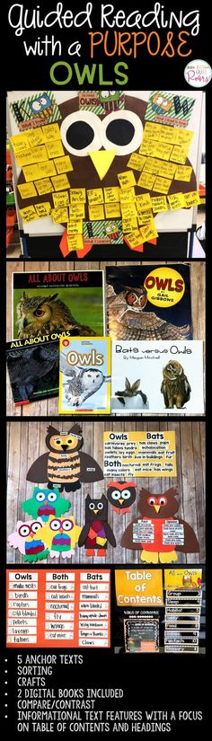 This informative unit about owls offers a great opportunity for students to explore text features using informational text. There are two books included in both color and b&w.  Table of Contents and Headings are a focus but many more things are included.  Research report, writing, owl pellet experiment, crafts, text connections to Owls by Gibbons and All about Owls by Arnosky.  Owl anchor charts, sorting bats vs. owls, fact or opinion, owl vocabulary, word work and more.