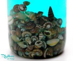 Sea Shell Sensory Bottle