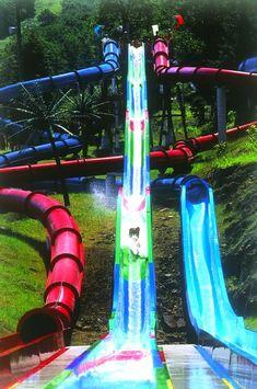 Dare to dominate all three unique waterslides, Cobra, Viper & Serpent, and plunge into some pulse-pounding fun! #ThisIsMyBeach