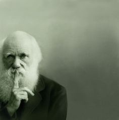 One of my absolute favourite images of Darwin. There's something so telling about how he's holding his finger, as if to convey a sense of caution and the fact that he's pondering deeply all at once.